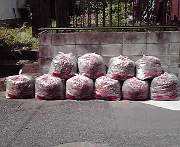 見よ、ゴミ袋