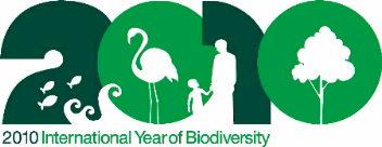 国際生物多様性年(英文)